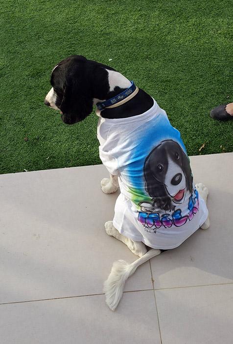 חולצה לכלב צבעונית בטכניקת איירבראש